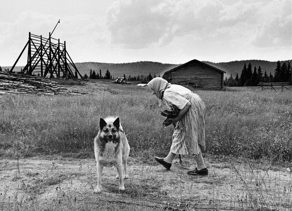 sune jonsson 'gumman och hunden'