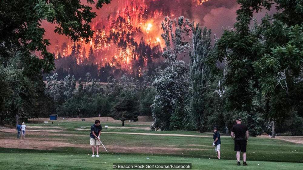 golfarna och skogsbranden